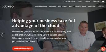 Cobweb Website.png