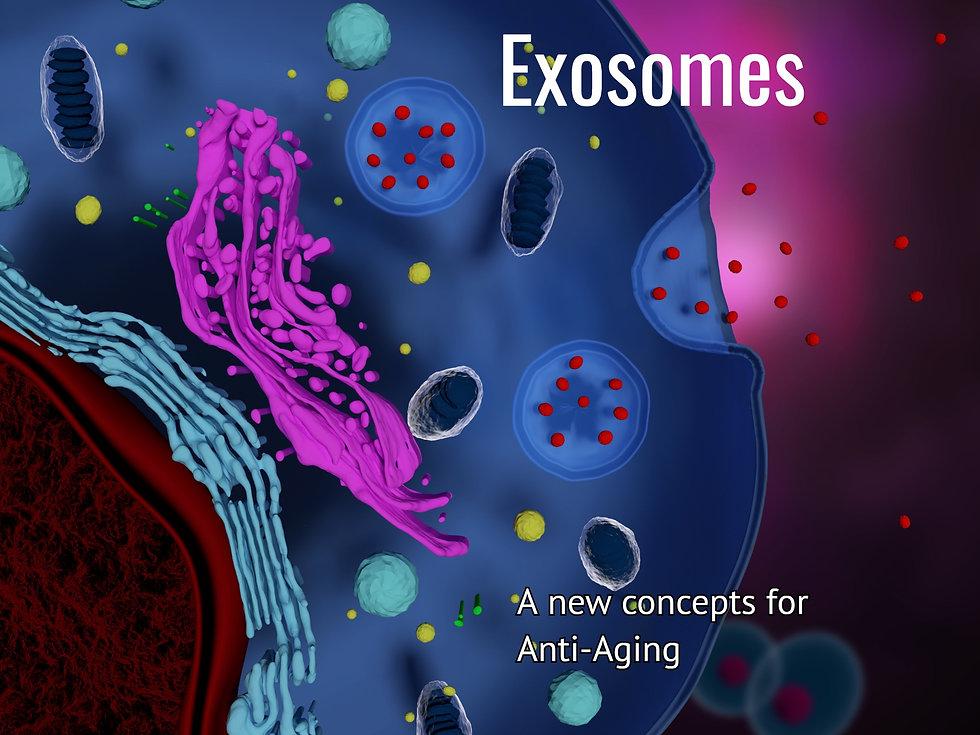 Exosomes-Anti-Aging_edited.jpg