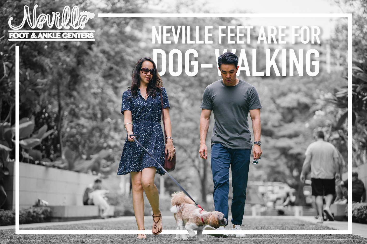 Dog walking feet!