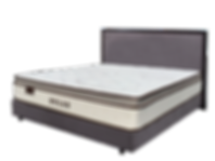 dylan cutout bed.png