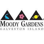 Moody_Logo_Square_200x200.jpeg