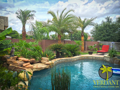 Poolscapes! Best landscape advise from our pros