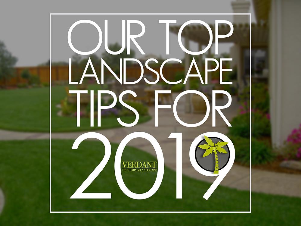 HOUSTON LANDSCAPE TIPS 2019