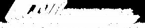 MCSI logo white.png