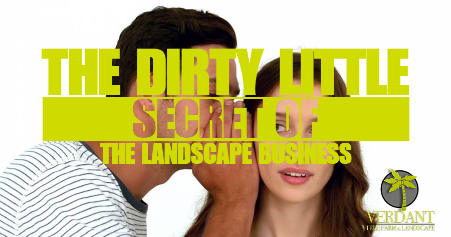 WE GIVE YOU 3 SECRETS!