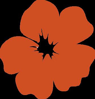 Hibiscus_V_orange.png