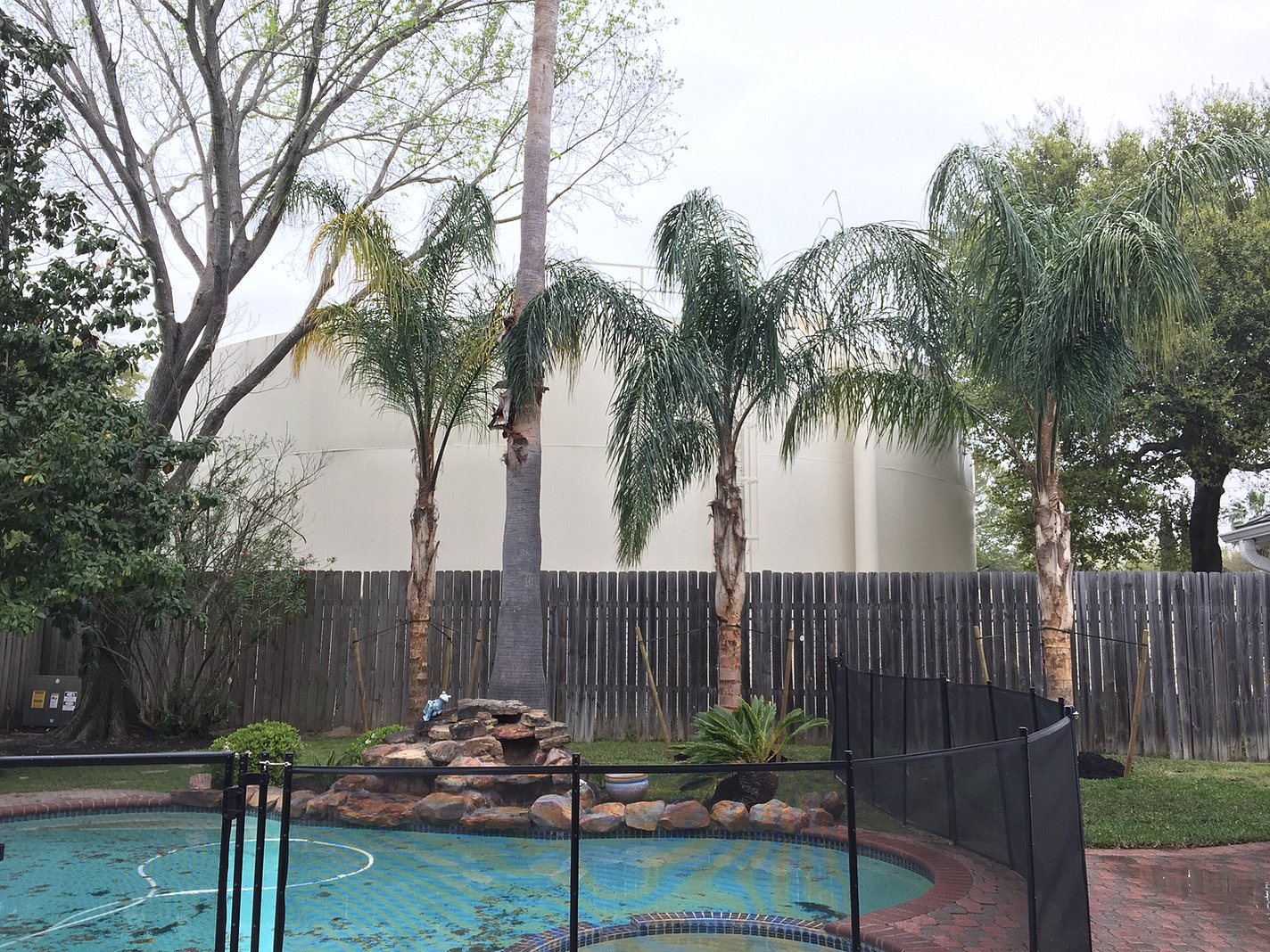 Houston Verdant Tree Farm And Landscape