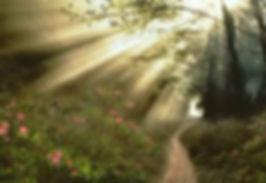 SPIRIT GUIDE1.jpg