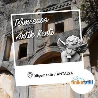 Termessos Antik Kenti - Made with Poster