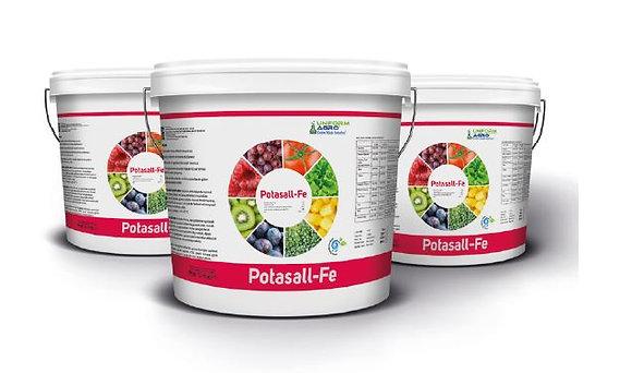 Potasall-Fe