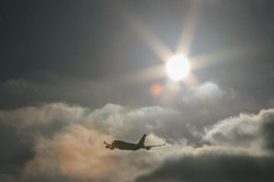 JIP_747_LAX