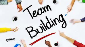 """Vous avez dit """"vet team building""""? 😳"""