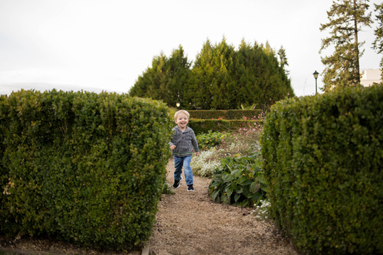 Candid photos of 2 yr old boy playing in Olympia State Capital gardens. Picture by A Bit O' Whimsy Photography
