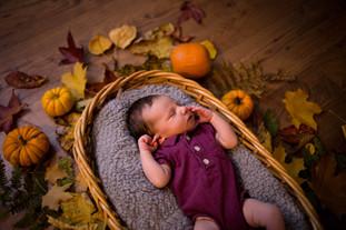 Newborn Photography session in Thurston County WA