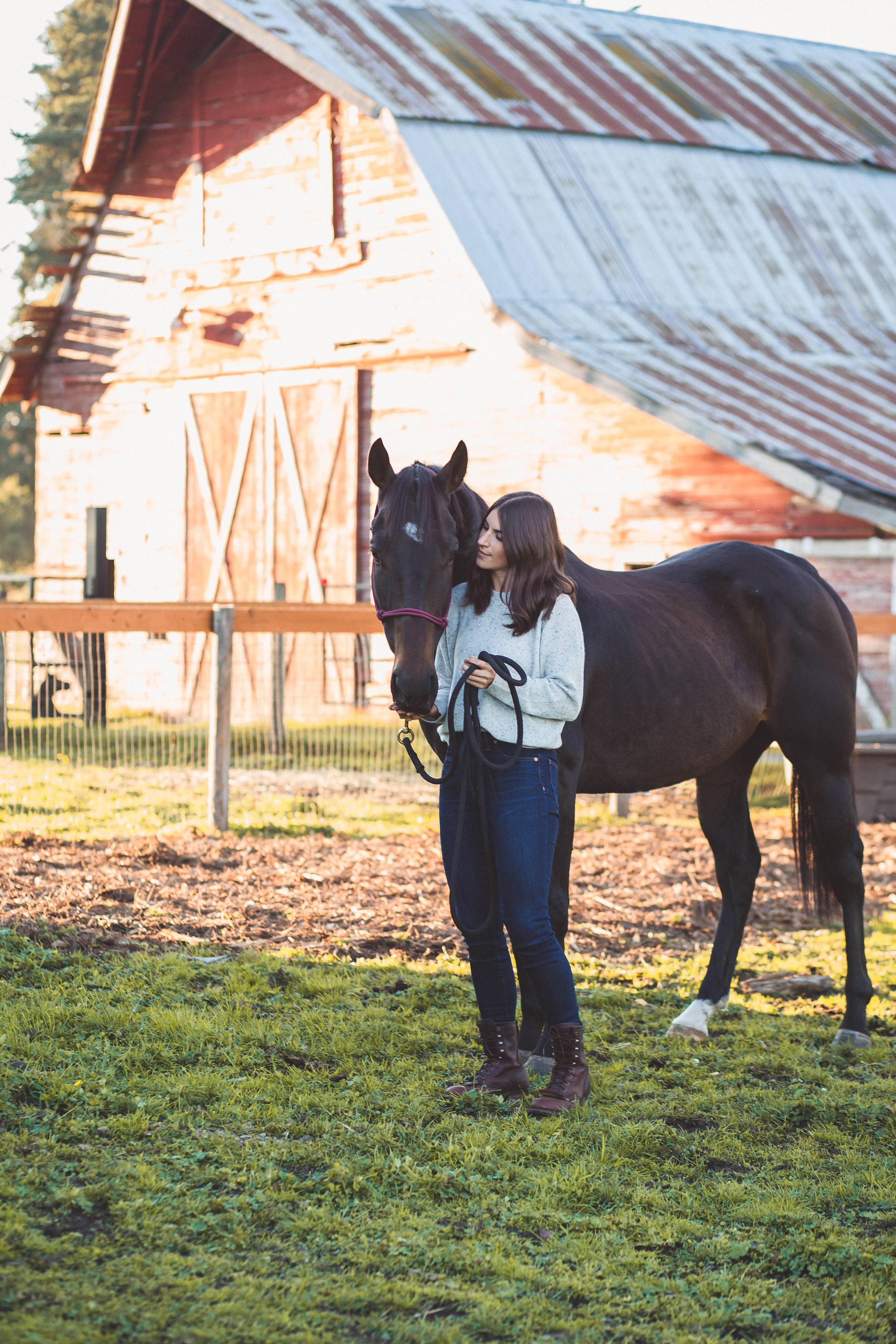 Equine Photography in Western Washington by A Bit O' Whimsy Photography