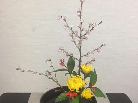 Sign of spring / 春の兆し