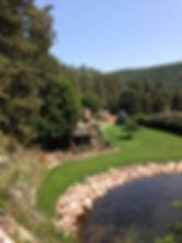 Hydroseed lawn in Rapid City