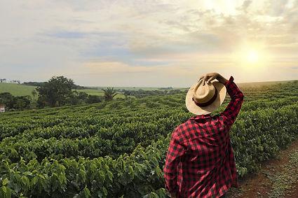 Fazenda-de-Café.jpg