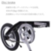 IMG_2956 disc.jpg