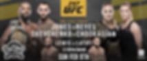 UFC 247.png