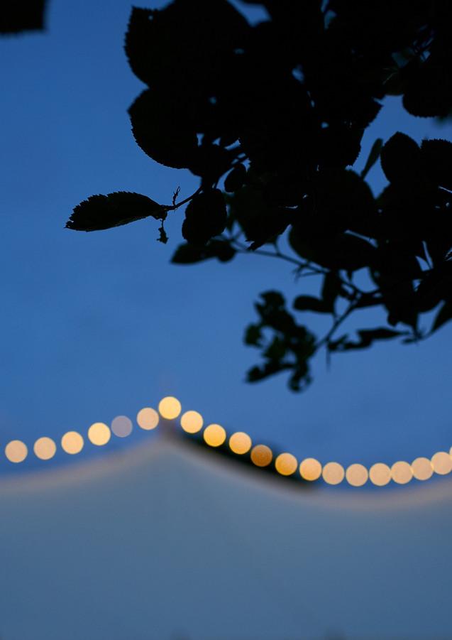 Overhead Festoon Lights