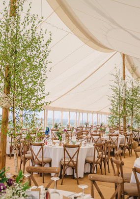 Luxury Marquee with Trees Inside