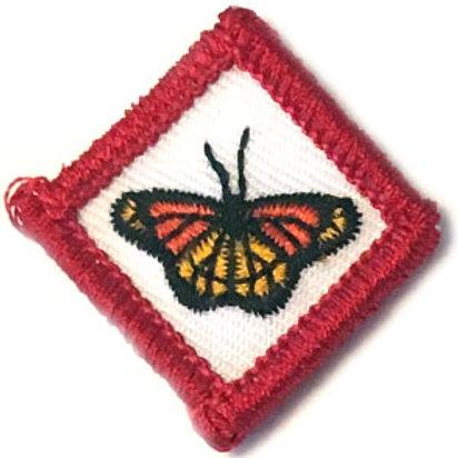 Guziczek skrzatowy - Motylek