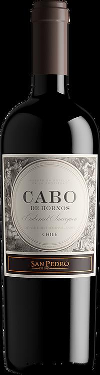 CABO de Hornos 2017, Chile
