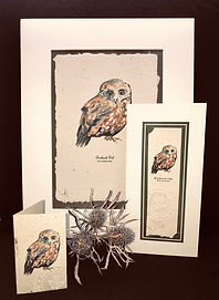 Trio - Avian (Owl) .JPG