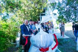 nunta Ciresu (5)