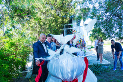 nunta Ciresu (4)