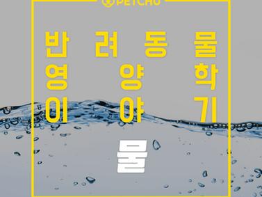 알파벳과 펫츄가 함께하는 반려동물 영양학 시리즈 - 영양학 이야기 1.물