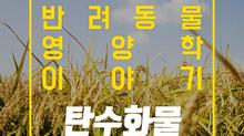 알파벳과 펫츄가 함께하는 반려동물 영양학 시리즈 - 영양학 이야기 2. 탄수화물