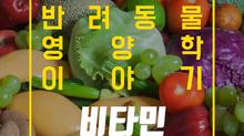 알파벳과 펫츄가 함께하는 반려동물 영양학 시리즈 - 영양학 이야기 6.비타민