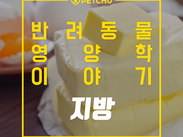 알파벳과 펫츄가 함께하는 반려동물 영양학 시리즈 - 영양학 이야기 4.지방
