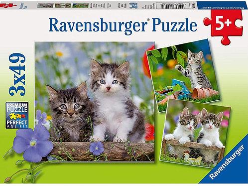 Ravensburger - 3X49pcs