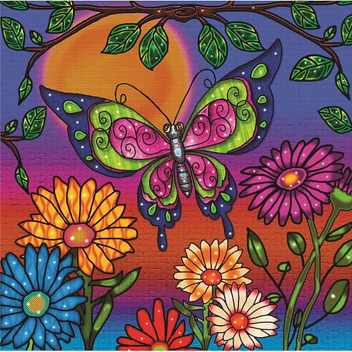 Jacarou - Papillon