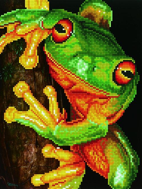 Diamond Dotz - Green Tree Frog