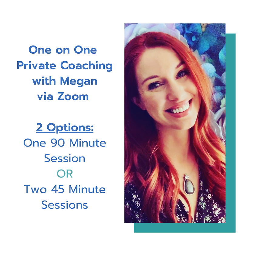 A 90 Minute Private Coaching Session with Megan (Or Two 45 Minute Sessions)