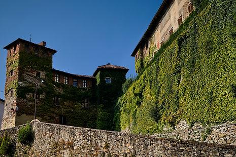 Castello medioevale di Tagliolo Monferra
