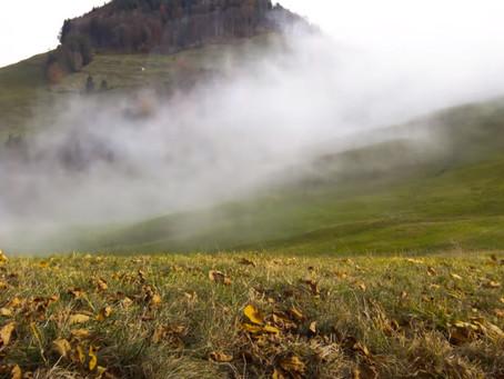 Não Olhe a Neblina !