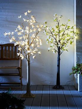 P_Garden_Scott_Lendon_.com_02.jpg