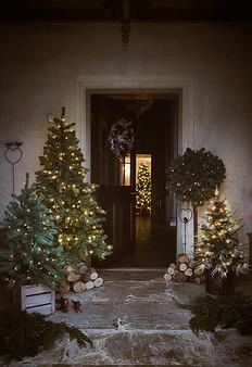 M_Christmas_Scott_Lendon_.com_34.jpg