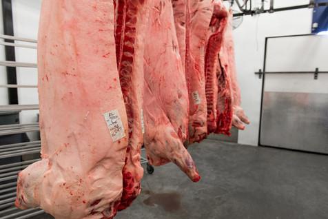 Tizer Meats-34.jpg