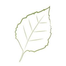 Floating Leaf Studios