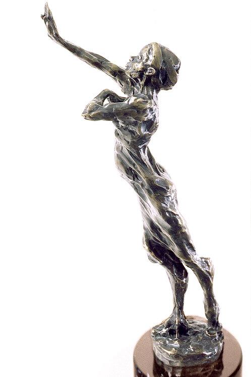 Anima Mundi,the UN Womens' Peace Prize