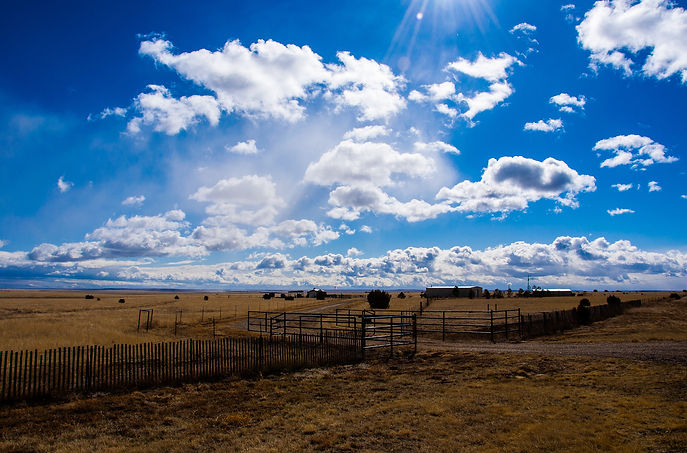 Amarillo-Farm-Fields-and-Ranch-lands-Big