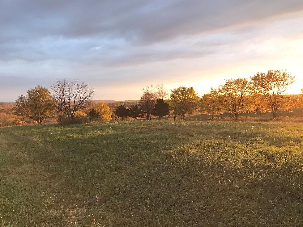 Autumn in Claverack, NY