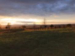 The sun setting over the farm.