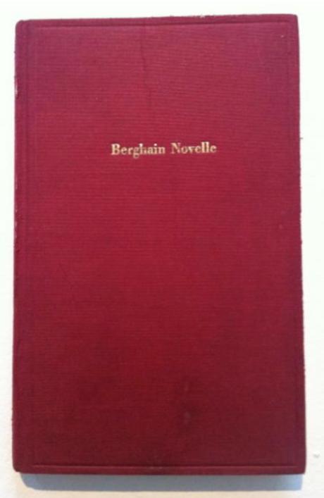 Berghain Novelle von Lukas Feireiss, Laura Mars Gallery
